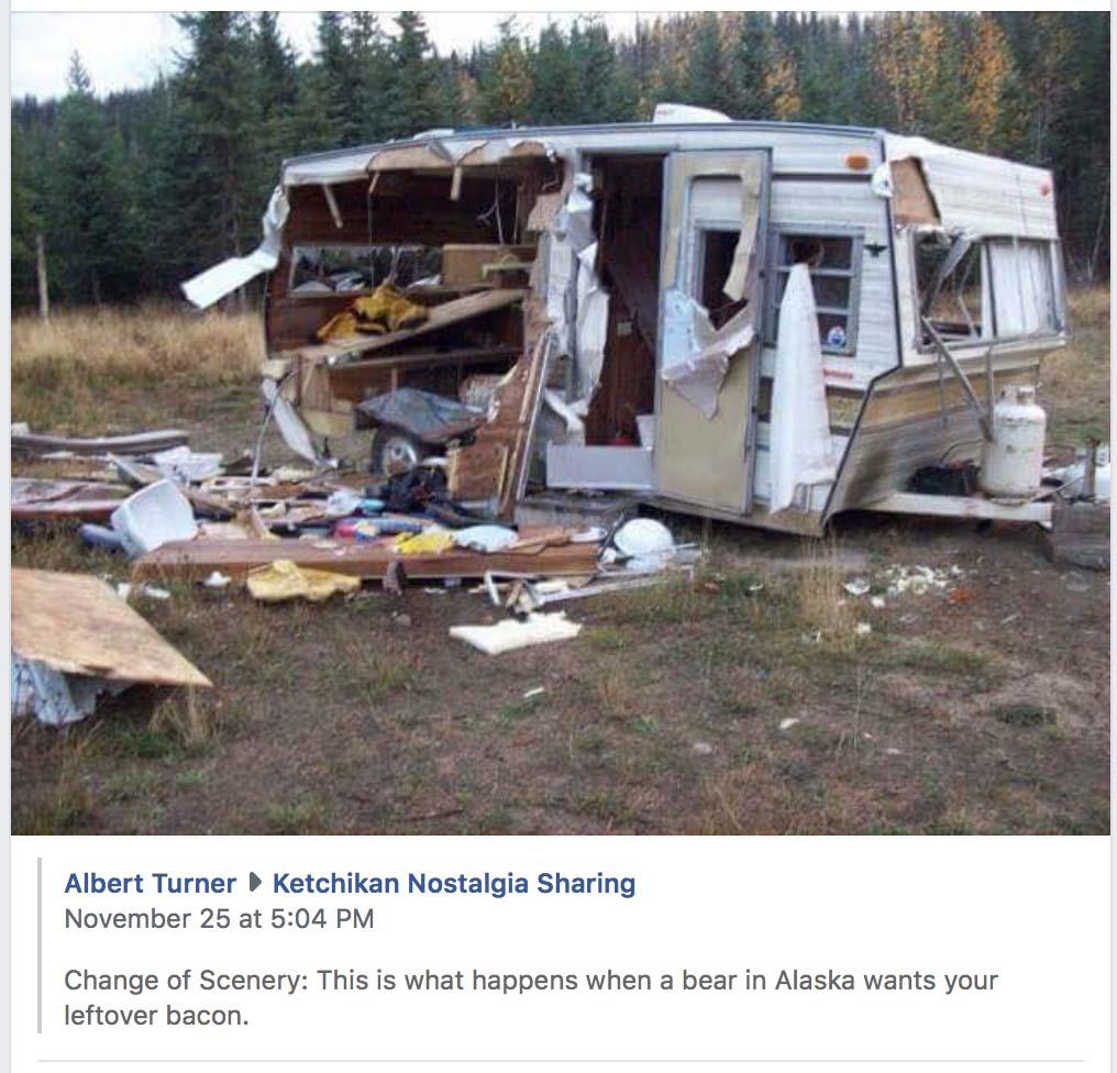 http://www.cannedhamtrailers.com/forum/stuff/beartrailer.jpg